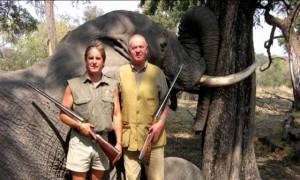 caza-de-elefantes