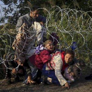 Refugiaos